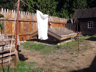 laundry on the line; root cellar in the background