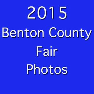 2015 Fair