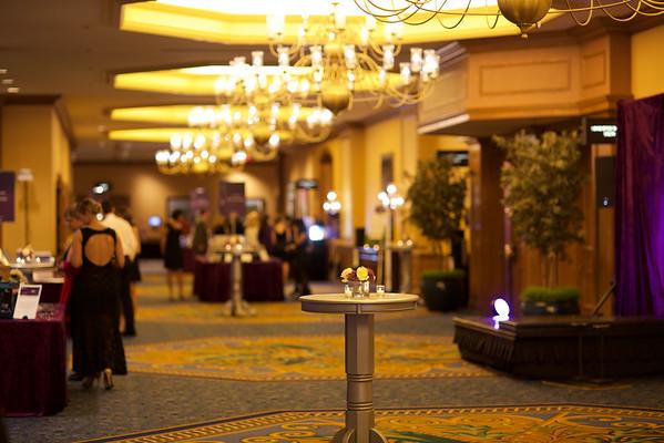 2015 Silver Linings Gala