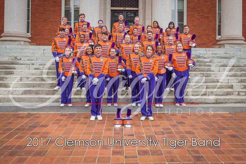 2017-tiger-band-section-pics-41
