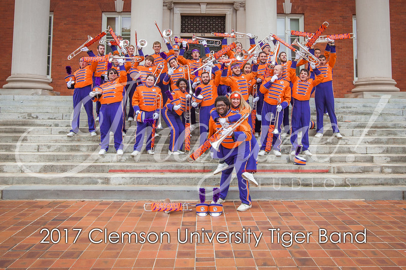2017-tiger-band-section-pics-39