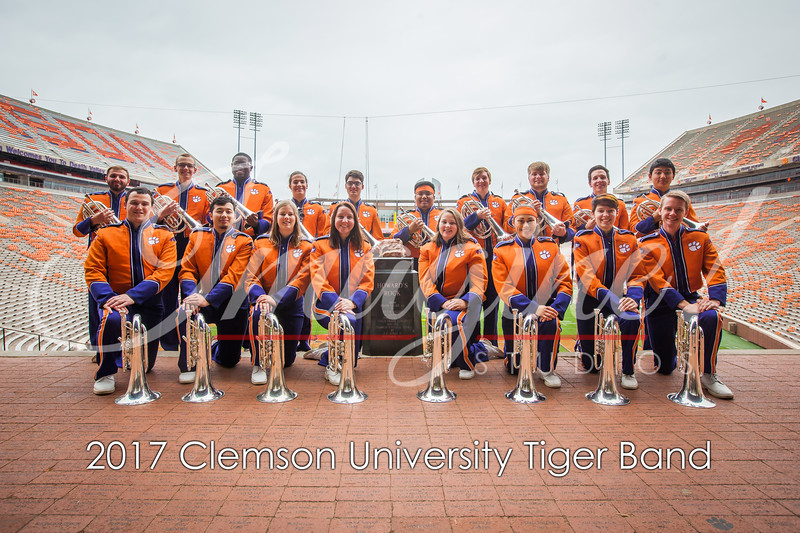 2017-tiger-band-section-pics-7