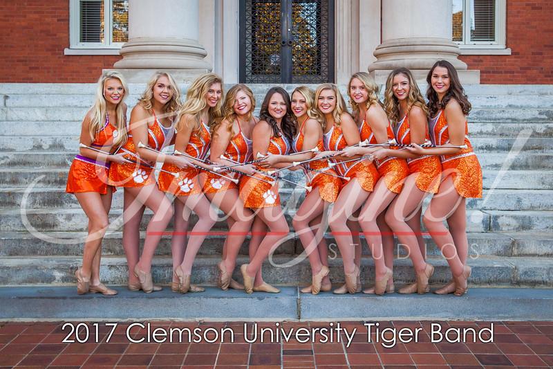 2017-tiger-band-section-pics-61