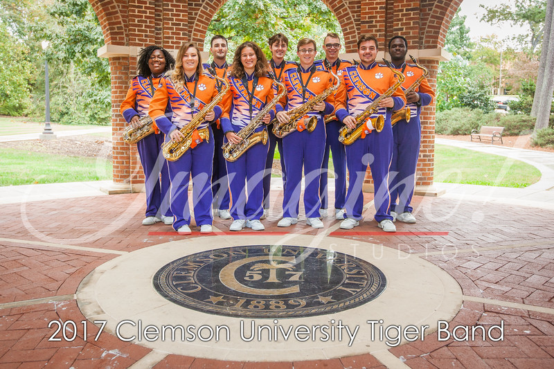 2017-tiger-band-section-pics-23