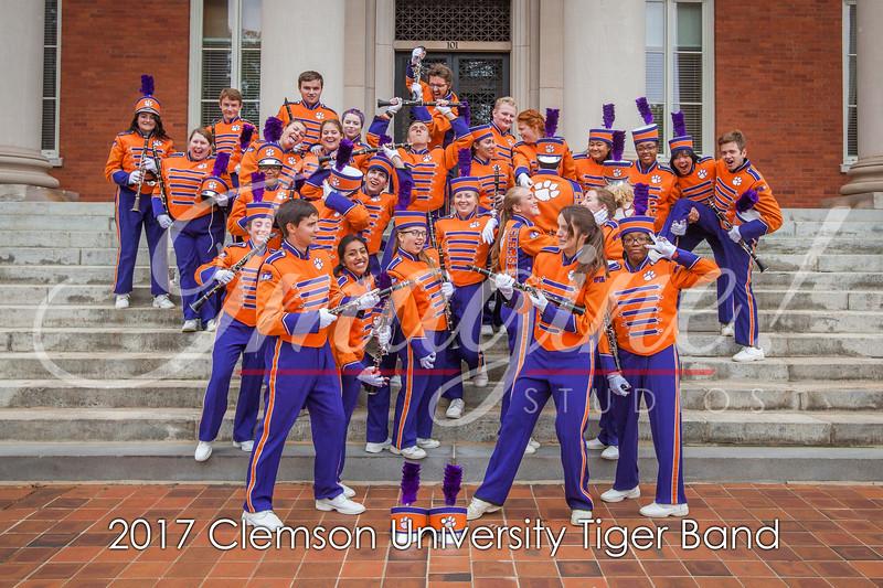 2017-tiger-band-section-pics-43