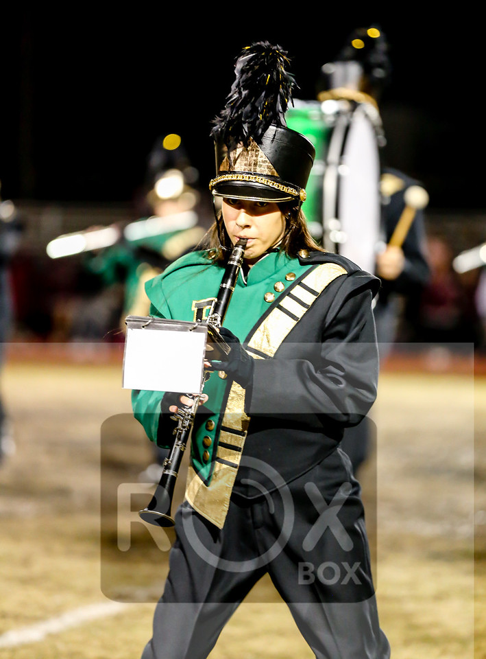 Final Placer v Natomas Band Cheer 111017-17