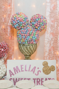 Amelia's Birthday Party_019