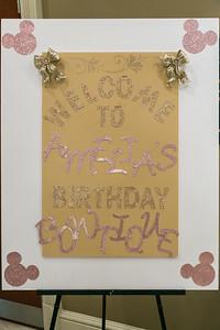Amelia's Birthday Party_004