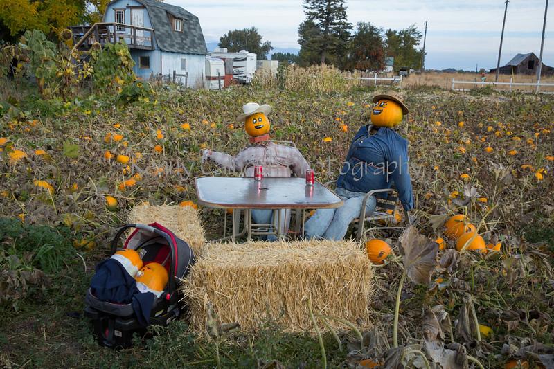 Meadowlark Pumpkin Farm-2187