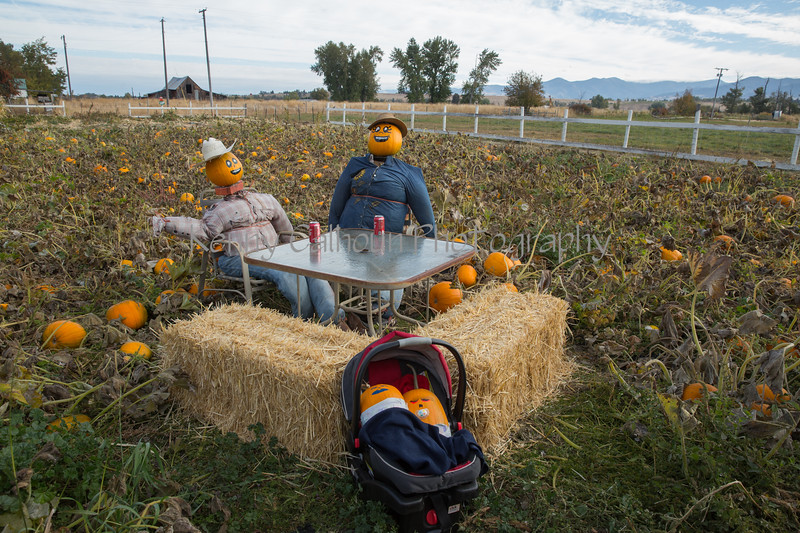 Meadowlark Pumpkin Farm-2189