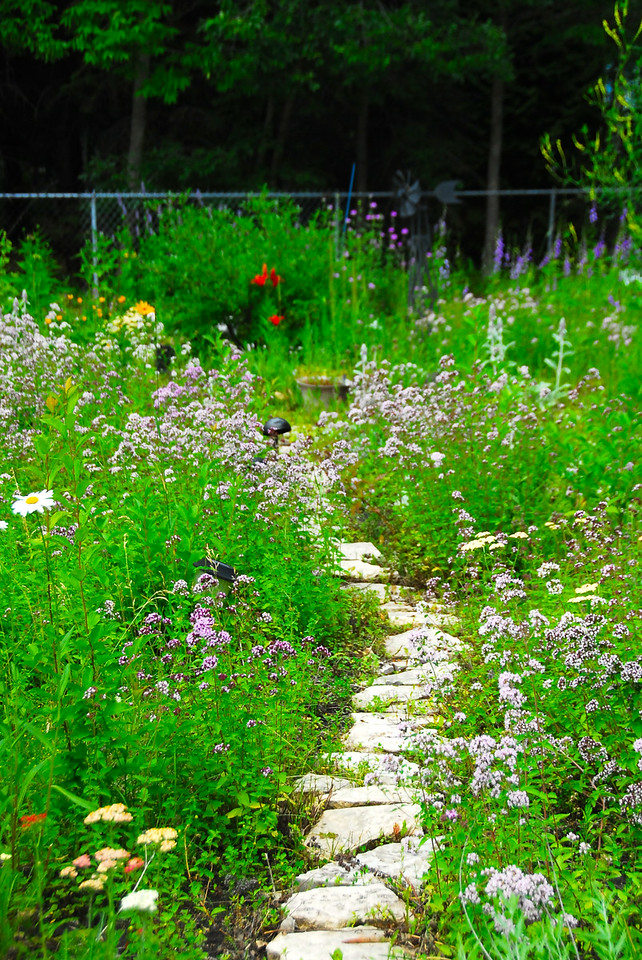 One of the garden paths.