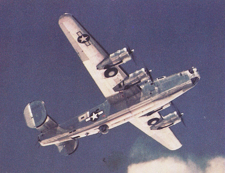 THE AIRCRAFT<br /> <br /> The aircraft involved was a Consolidated TB-24J Liberator (42-50890). Both aircraft and crew were part of the 3007th AAF Base Unit stationed at Kirtland Field, New Mexico.