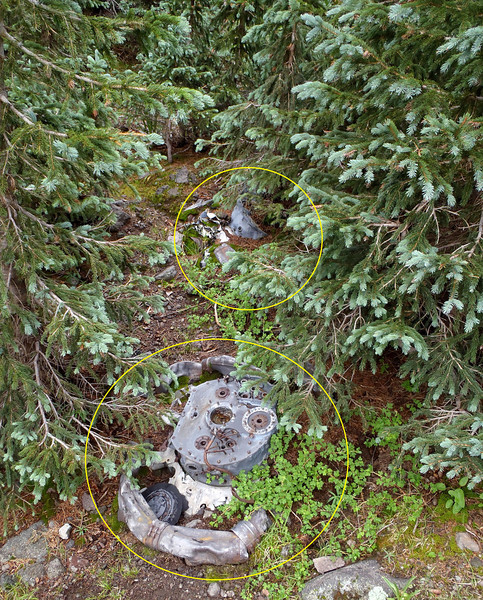 With one engine located in the trees, we searched for the other three engines. We found these two engines partially buried in the ground.