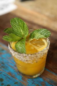 tippling cocktail 051115-28