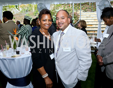 Kim and Danny Randle. Photo by Tony Powell. Africare Fundraising Reception. Stafford Residence. May 18, 2014