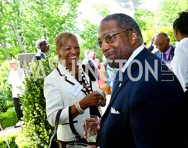Louise Nickens, Ronald Johnson. Photo by Tony Powell. Africare Fundraising Reception. Stafford Residence. May 18, 2014