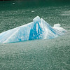 A small iceberg floating from the Sawyer Glacier in Tracy Arm. Notice the blue ice from centuries of compacted snow and ice.