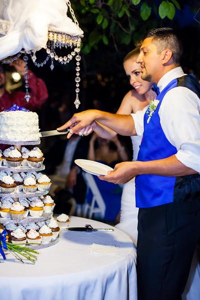 20150627_Anthony & Kaitlyn Wedding_8155