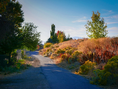 2020-10-15 – Trail heading west off of the Murdock Canal Trail