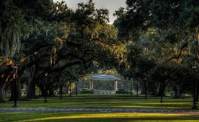 audubon-park-trees-5-9
