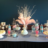 Bridal Shower - Candy Bar & Doll Cake