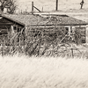 """West of Medora, south of Camels Hump<br /> <br /> You can own this print as wall decor or other products.  Click the """"buy"""" button to browse."""