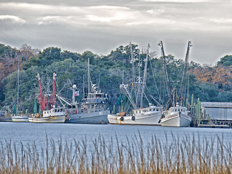 Shrimp boats at Cherry Point on Wadlamaw Island in SC
