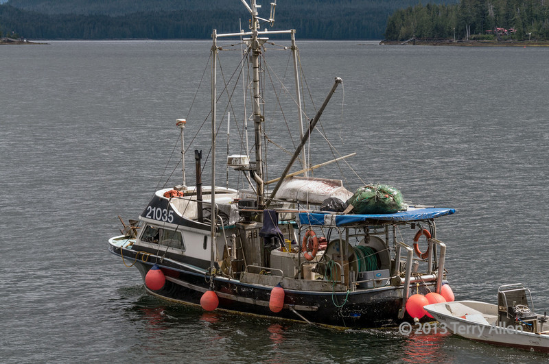 Fisheries research boat-1, near Denny Island, BC