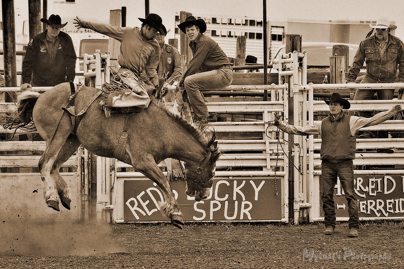 Wing Rodeo