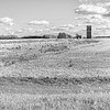 """In southern Trail County an abandoned wooden grain elevator next to an abandoned rail line. <br /> <br /> You can own this image. To browse the products available, just click the """"buy"""" button to see the wall decor and keepsakes."""