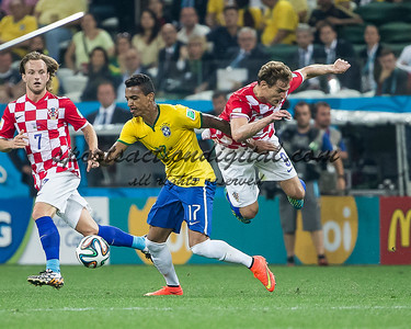 Luiz Gustavo, Nikica Jelavic