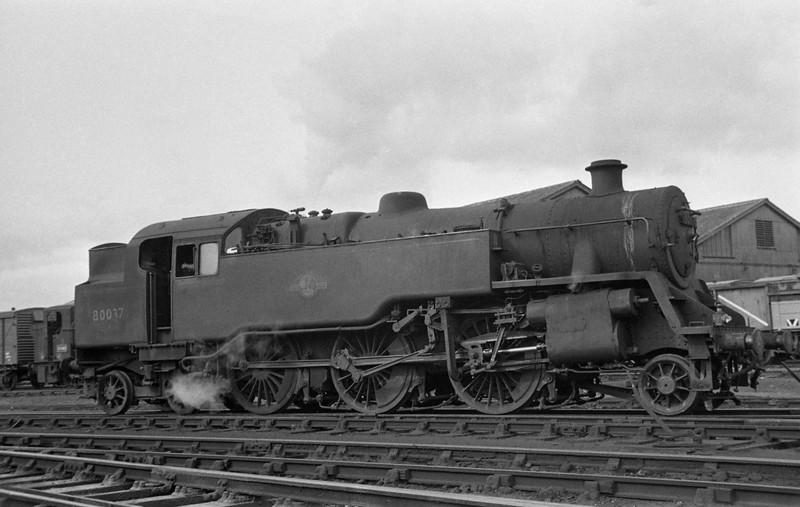 80037, Exmouth Junction Shed, Exeter, autumn, 1963.