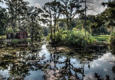 bayou-swamp-2-1
