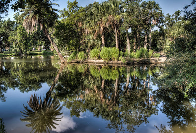 bayou-pond-reflection-2