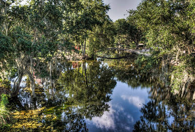 bayou-reflection-bridge-2-1