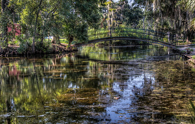 bayou-swamp-bridge-2