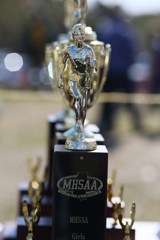 2014 MHSAA Cross Country