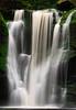 Shays Run, Blackwater Falls State Park