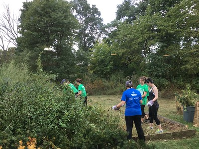 GW Freshman Day of Service 2016