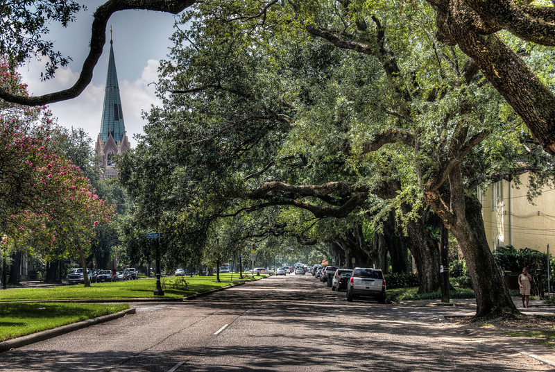 church-spire-road-trees-1