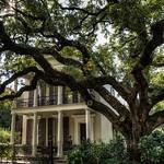 oak-tree-house-1