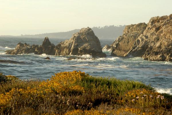 BIG SUR  Point Lobos State Park