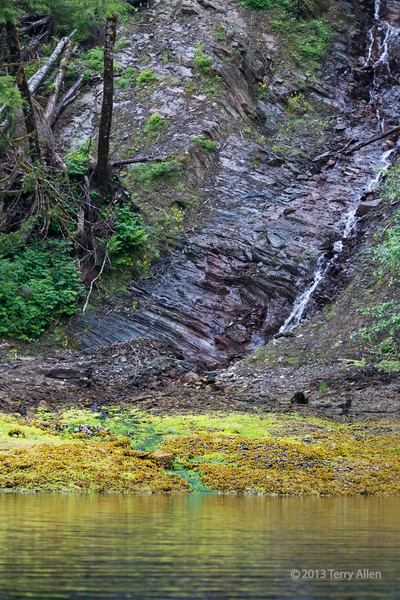 Small waterfall, Green Inlet, BC