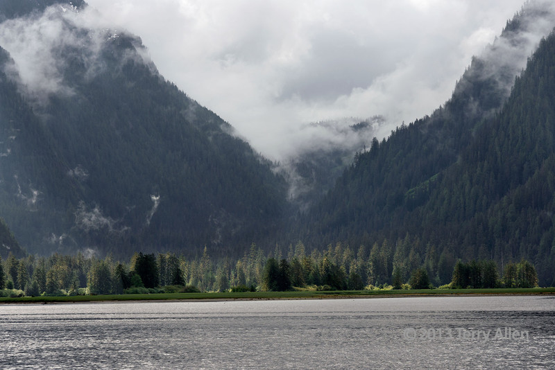 Head of Khutze Inlet and the Khutze River estuary, early morning, Great Bear Rainforest, BC