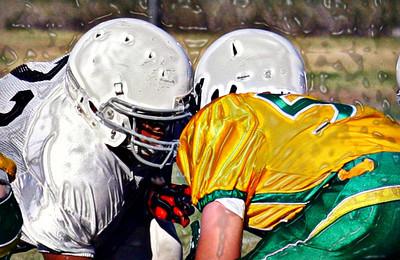 Griffin Gators Football 2013