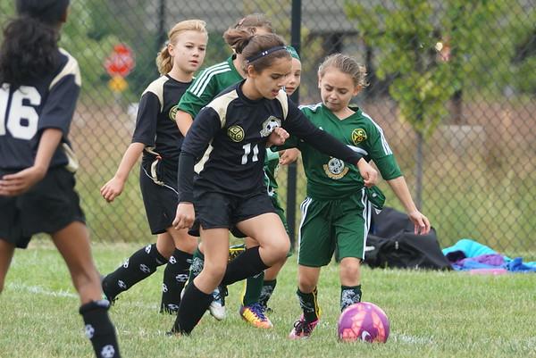 HFS Soccer Fall 2017