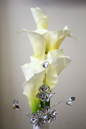 1-9-14<br /> Heartland-White Lilies N Paradise flowers<br /> This calla lily is an example of what a bride would carry down the aisle.<br /> KT photo | Kelly Lafferty