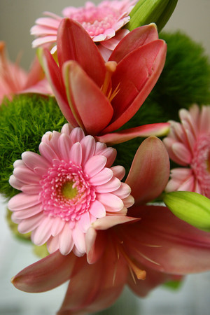 1-9-14<br /> Heartland-White Lilies N Paradise flowers<br /> Lilies, carnations, and Gerber daisies makeup this nosegay that a bridesmaid would carry.<br /> KT photo   Kelly Lafferty