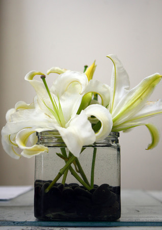 1-9-14<br /> Heartland-White Lilies N Paradise flowers<br /> This lily cube is filled with stargazer lilies to be used as a table centerpiece.<br /> KT photo | Kelly Lafferty