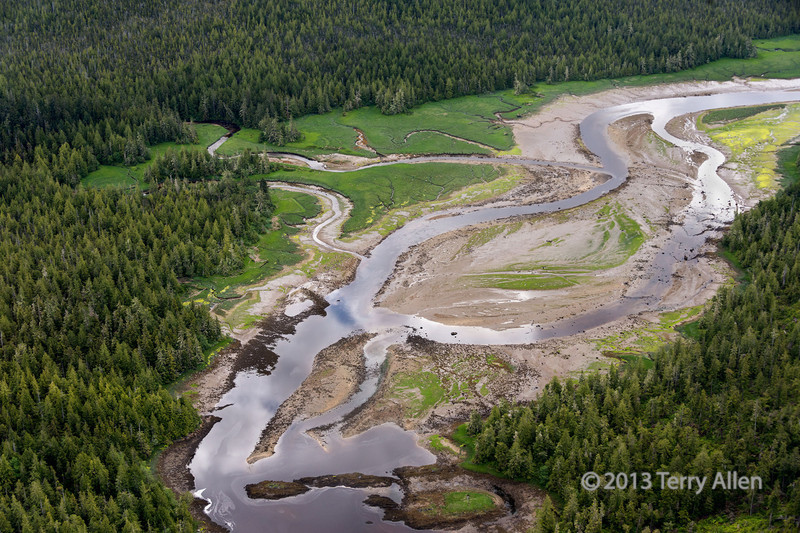 Braided river, opposite Kennedy Island, South Chatham Sound, south of Prince Rupert, British Columbia